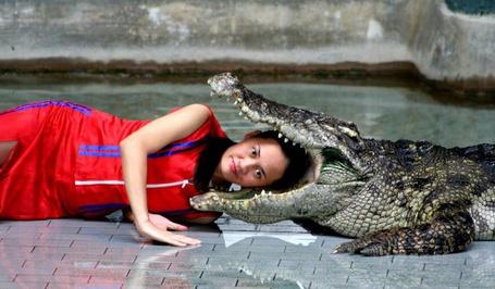 Фото Девушка дрессировщица положила голову крокодилу в пасть