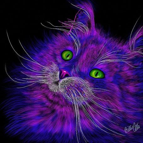 Фото Логотип английской музыкальной группы Электрический кот / Big Electric Cat, с изображением фиолетовой головы пушистого кота с зелеными глазами, ву Bille Jo Ellis