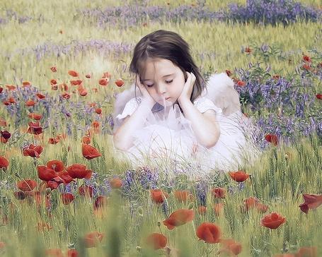Фото Девочка в белом платье присела на лугу среди полевых цветов и закрыла глазки, by ChiantyVex