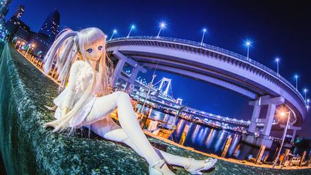 Фото Фото куклы на фоне ночного города и моста