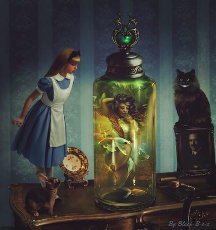 Фото Alice / Алиса и Cheshire Cat / Чеширский Кот из сказки Alice in Wonderland / Алиса в стране чудес