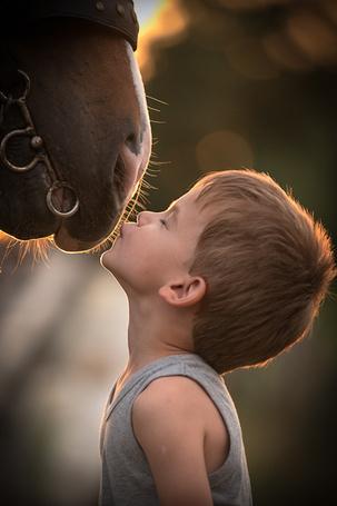 Фото Мальчик целует лошадь