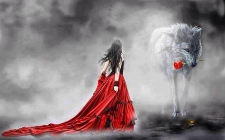 Фото Девушка в длинном красном платье стоит перед огромным волком с розой в пасти