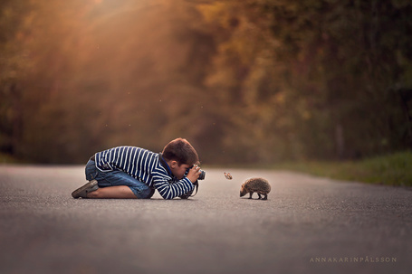 Фото Мальчик фотографирует ежика, ву Anna Karin PГҐlsson