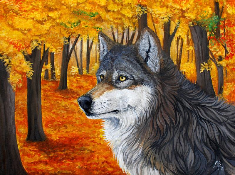 Фото Волк на фоне осенних деревеьв, by wolf-minori
