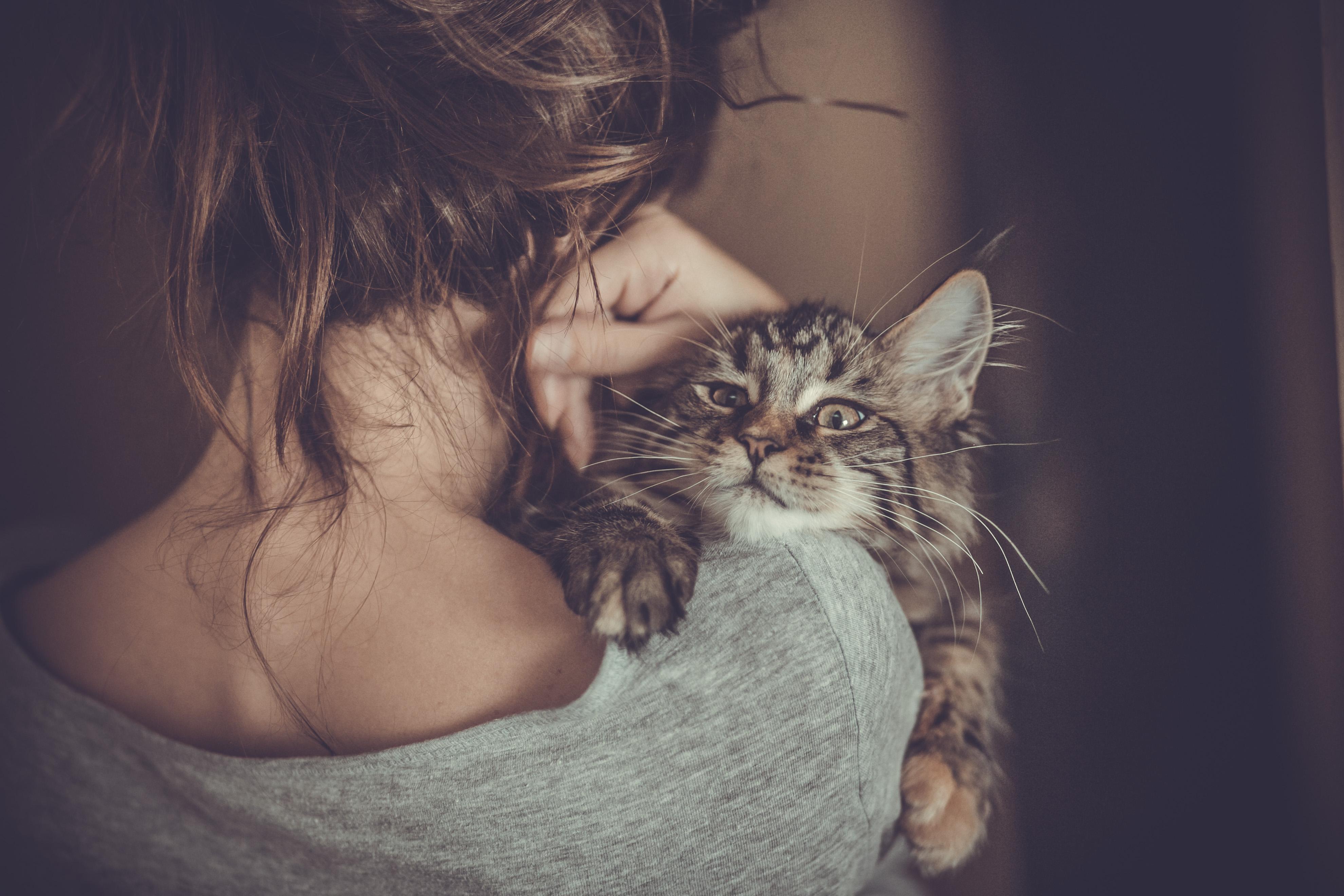 Кошка и девушки фото