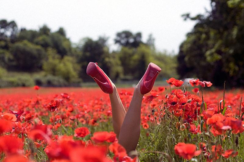 Жизнь в цветах