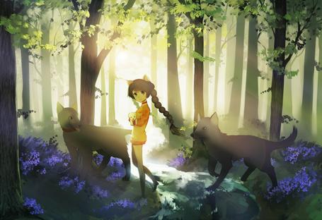 Фото Девочка с ушками гуляет по лесу с собаками, by longestdistance