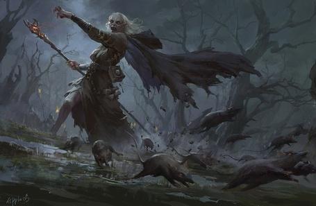 Фото Ведьма с посохом, в старом лесу и бегущими от нее крысами