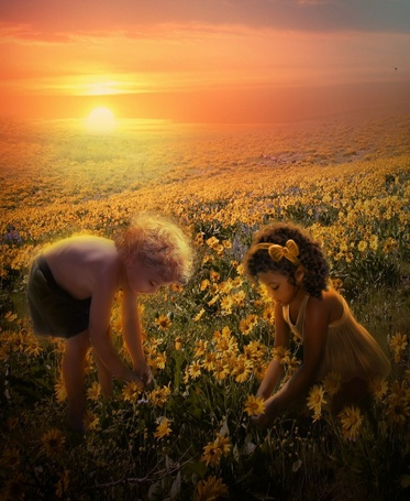 Фото Мальчик с девочкой на поле с цветами, by mari-na