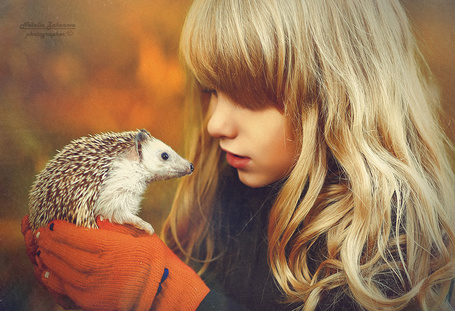 Фото Девочка с ежиком, фотограф Наталья Законова