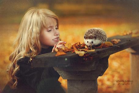 Фото Девочка и еж на лавочке, фотограф Наталья Законова