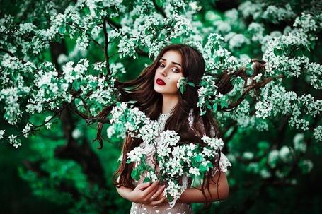 Фото Девушка стоит среди веток дерева с белыми цветами, фотограф Светлана Беляева