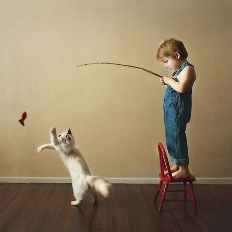 Фото Мальчик стоит на стульчике и играет с котом привязанной к удочке красной рыбкой, фотограф Бет Манкузо