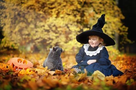 Фото Девочка в шляпе конусом, смотрит на кота в опавшей листве, позади них тыква