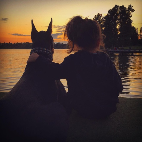 Фото Девочка и доберман сидят на берегу реки и смотрят на закат, ву Siena Prucha