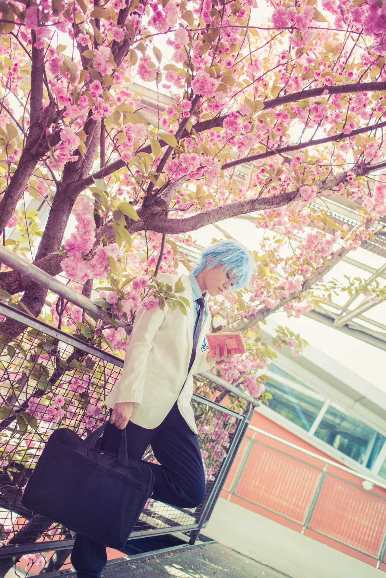 Фото куроко тецуя