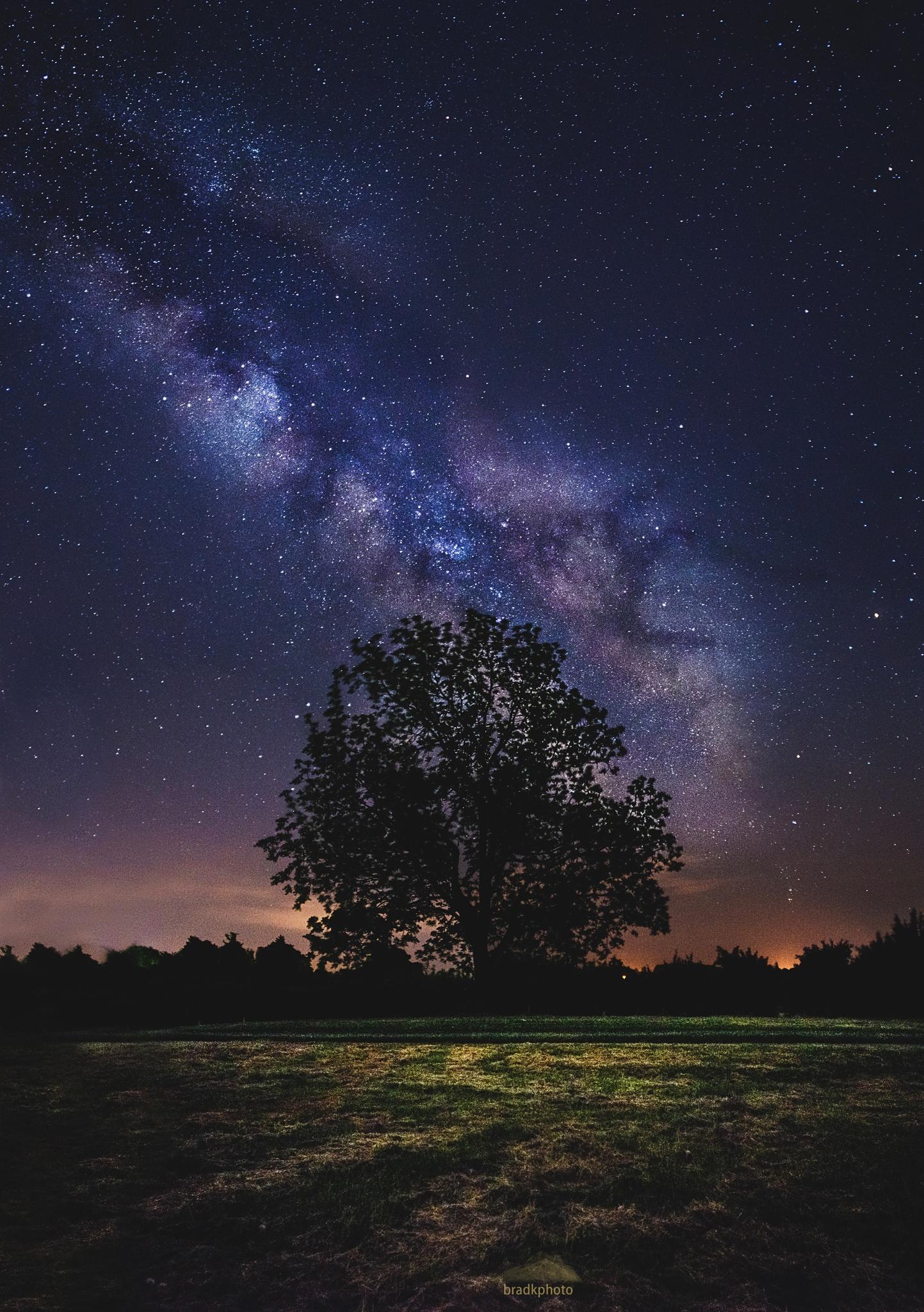 размера картинки ночное небо и деревья украсила девушка свой