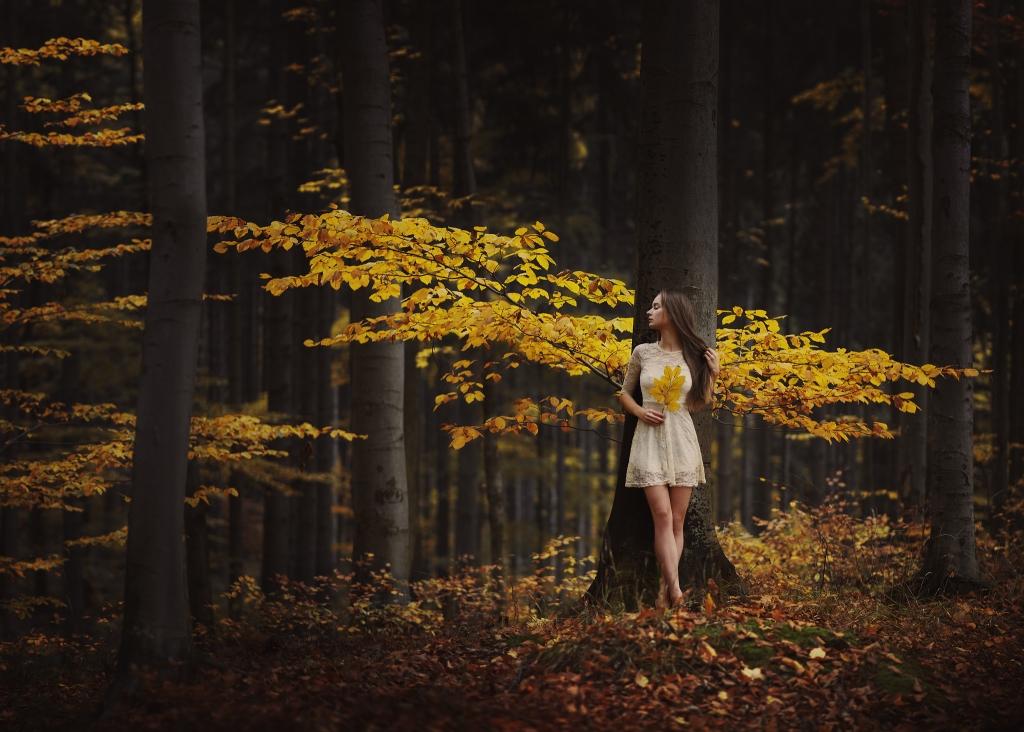 Фото Девушка в осеннем лесу, фотограф Bara Vavrova