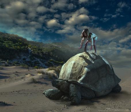 Фото Девочка на черепахе, ву Manuel Barca