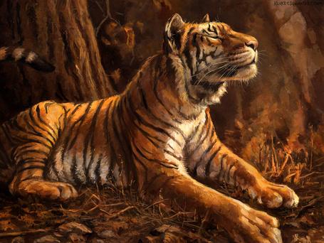 Фото Тигр лежит на земле, by kenket