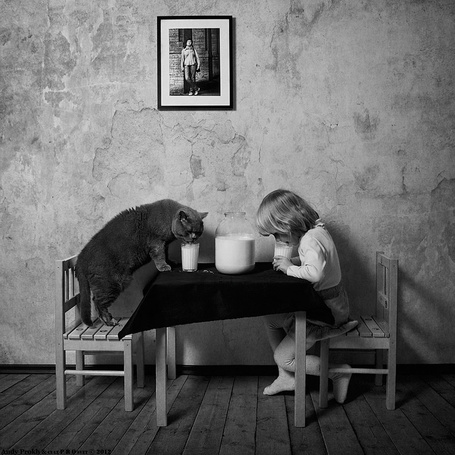 Фото Девочка с котом, пьют молоко, сидя за столом, автор Andy Prokh & cur P R Oset 2012