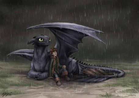 Фото Беззубик прикрывает крылом Иккинга, спасая его от дождя, мультфильм Как приручить дракона / How to Train Your Dragon