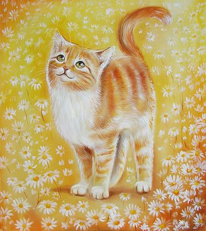 Фото Бело-рыжий кот среди ромашек, работа Аннет Логиновой