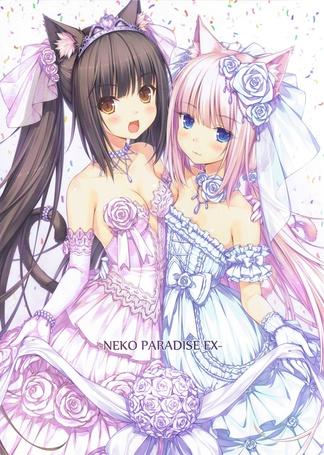 Фото Chocola и Vanilla в декольтированных свадебных платьях, манга Neko Paradise ex, art by Sayori