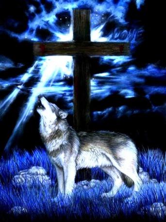 Фото Волк воет у могилы с крестом (love)