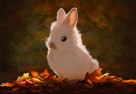 Фото Белый кролик на осенней листве, by LeeshaHannigan