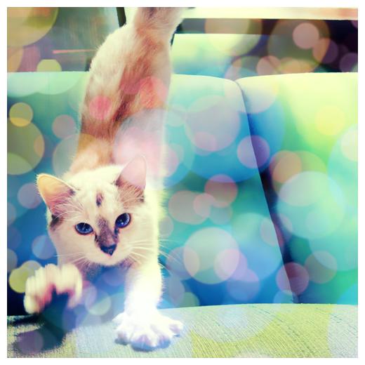 картинка потягивается кошка