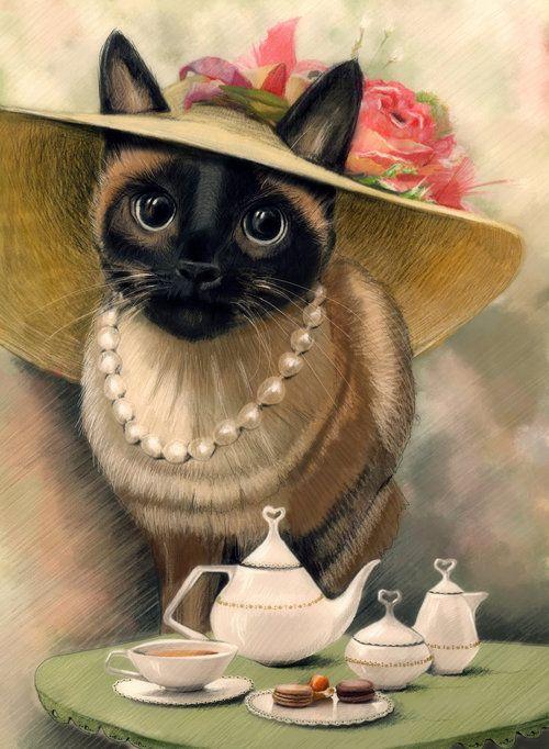 Картинка с анимацией кот в шляпе