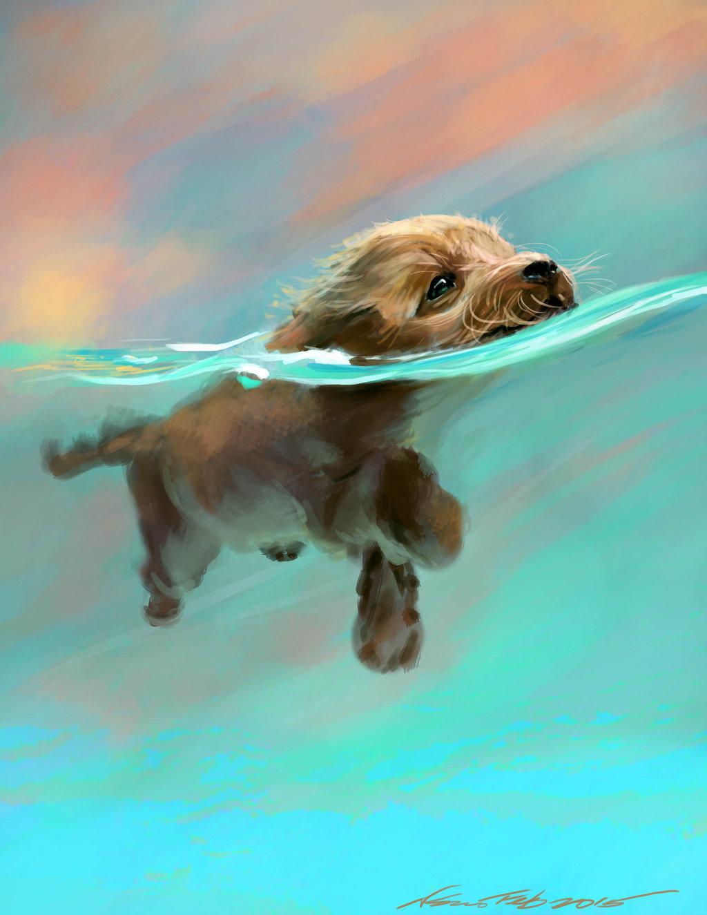 Фото Щенок плавает в воде: http://photo.99px.ru/photos/225702
