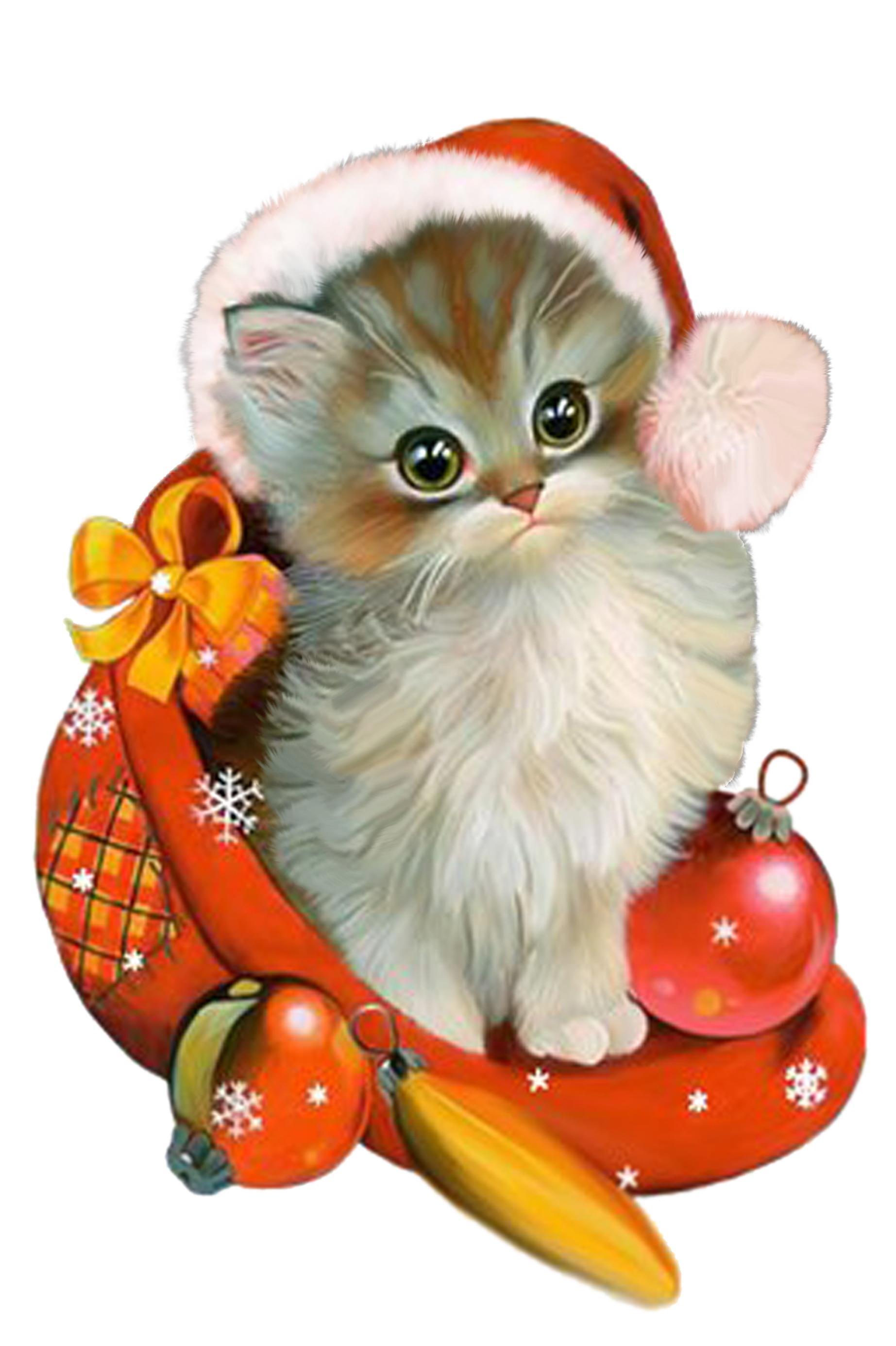 Новогодние открытки котята, семья открытка