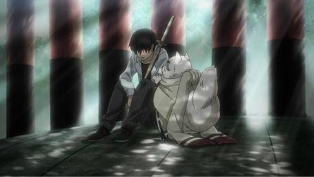 Фото Haru Лис дух-хранитель утешает Satoru Kamio, из аниме Серебряный лис / Gingitsune