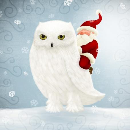 Фото Дед мороз сидит на белой сове