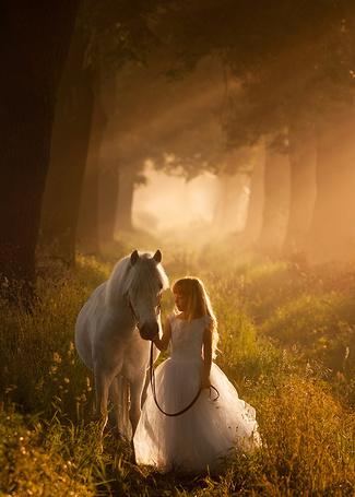 Фото Девочка в парке, в пышном платье, держит в руках поводья и смотрит на пони стоящую рядом