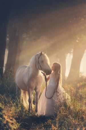 Фото Девочка держит за поводья милого пони на фоне леса и солнечных лучей, by Cecylia Leszczak
