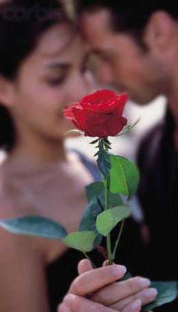 Фото Девушка с мужчиной танцуют держа в руке красную розу