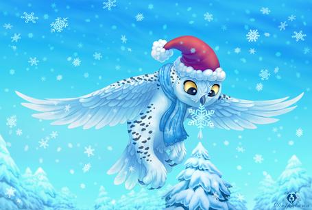 Фото Сова в новогоднем колпаке одевает на макушку елки снежинку, by DolphyDolphiana