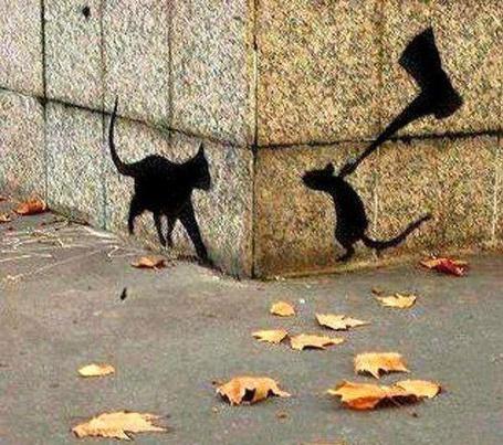 Фото Граффити +3D - Мышь и кот