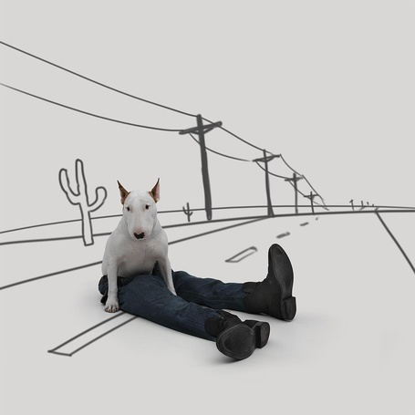 Фото Бультерьер сидит на нарисованной дороге в штанишках и ботинках, by rafael. mantesso