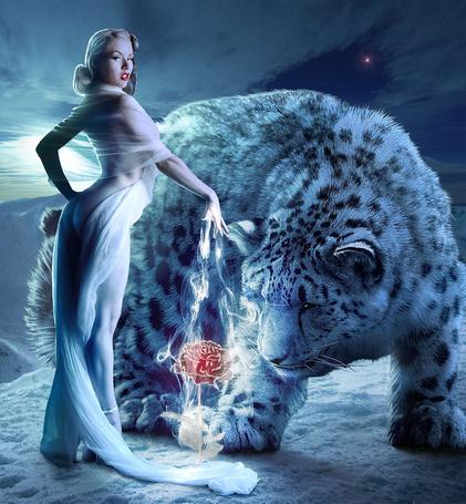 Фото Большой белый леопард смотрит как девушка магией создает розу, by Sasha Fantom