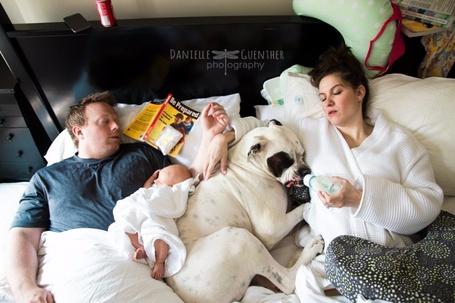 Фото Реалии семейной жизни, by Danielle Guenther