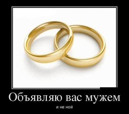 Фото Два обручальных кольца (Объявляю вас мужем и не ной)