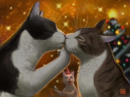 Фото Белая кошка шокирована поцелуем двух ее собратьев