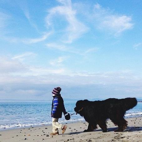 Фото Джулиан вместе с лучшим другом ньюфаундлендом Максом, Фотограф Сташа Бекер