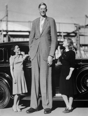 Фото Очень высокий мужчина и две девушки на фоне автомобиля