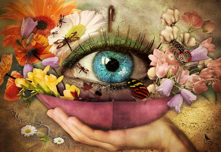Фото Глаз девушка с весенним цветением и бабочками, стрекозами на цветах, автор coby
